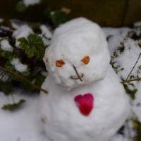 雪の菊水山へ。