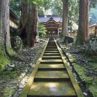 滞在型家庭菜園:永平寺の唐門