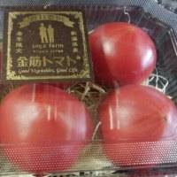 トマトの王様とトマトの妖精~曽我農園さんの金筋トマト~