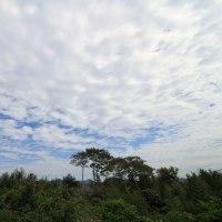 しまぞら曇り空 白い雲 2016.10.25