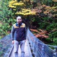 阿寺渓谷の紅葉。