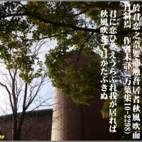 image2288 君に恋ひ・・・