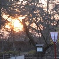 夕方の弘前公園内を散策