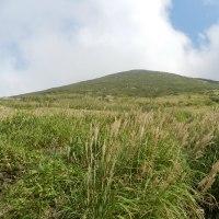 三俣山 満開のリンドウ(H28.9.24)