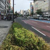 仕事で福岡