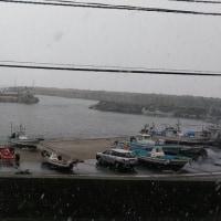 今日も海はシケてます!