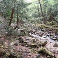甲武信ヶ岳登山(標高2,475m)(1)【川上村毛木平登山口~千曲川水源】