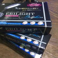 未使用JUN小型LEDライト エリーライトドルフィン