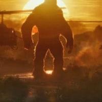 ■キングコング:髑髏島の巨神