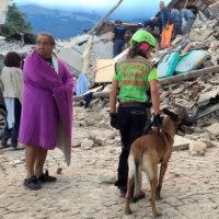 ★ 2016 イタリア地震リポート 日本人はどこまでそれに寄り添えているか?