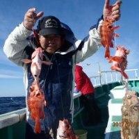 1月7日深海赤魚五目、サバ、サメに邪魔されたがポッポッ釣れた、いつも乗船いただきありがとうございます。