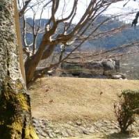 ♪ 石舞台→キトラ古墳→高松塚古墳→亀石→酒船石遺跡→亀型石造物?