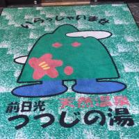 前日光つつじの湯交流館 NO461