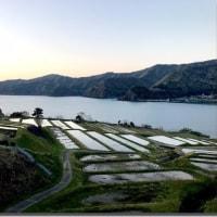 久須夜ケ岳に行きかけた