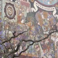メキシコ国立自治大学(UNAC)壁画にジャカランダの花