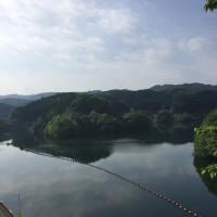 三重県の青蓮寺ダムにいます。