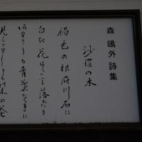 萩 津和野方面の旅ー40
