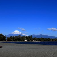 三嶋大社と大瀬神社
