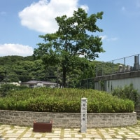東海道53次ラン&ウォーク (6/17)①知立宿〜鳴海宿