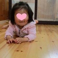 2017年4月22日(土)の【写真館】