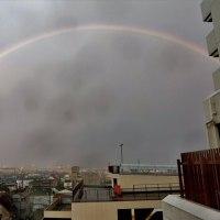 「虹」が出ました。