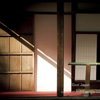 Cool Japan - 2 -
