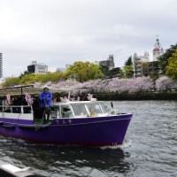 【桜巡りの旅】 水都大阪を満喫 大川さくらクルーズ