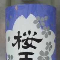 桜玉(おうぎょく)