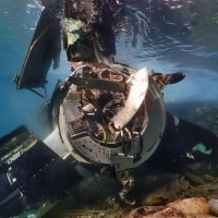 Senior U.S. official praises Osprey pilot's decision to ditch