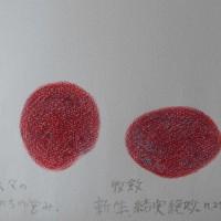 川口由一さんの絵画にふれて 秋深まりて冬仕たくする頃に・・。