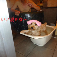 温泉と歯磨き
