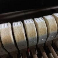 グランドピアノオーバーホール 第2弾