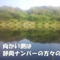 2017/5/29   5/21(日) 増沢池 日陰側