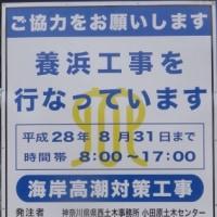 '16/05/28 国府津海岸