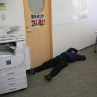 朝の事務所にイビキが鳴り響きます。