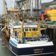 英国の漁業コミュニティに声をかけるための調査