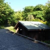 熊野古道・松本峠道を歩く