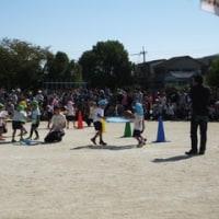 高槻・桜台認定こども園の「うんどうかい」を見学させて戴きました。