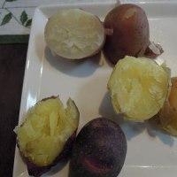 畑で収穫した3種類のじゃが芋で、コロッケ!
