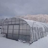 ひさしぶりの積雪
