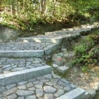 平安王朝文化の基礎を築いた第62代村上天皇の【村上陵】へ!