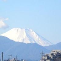 富士山がきれいに見えた