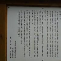 金刀比羅神社の例祭