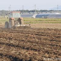 麦播き田の土壌改良