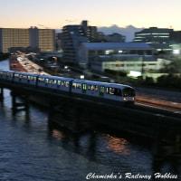 【鉄道写真】京浜運河を行く東京モノレール(その8)