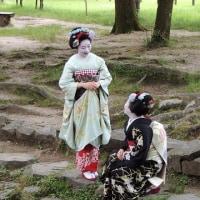 はんなり...京都の舞妓はん!