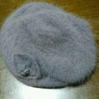 新しい財布&ニット帽&ケーキ&啓翁桜