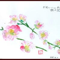 かわいい~かわいい~桃の花