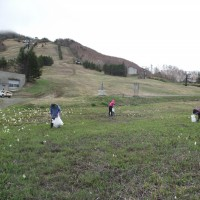 湿原のゴミ拾い