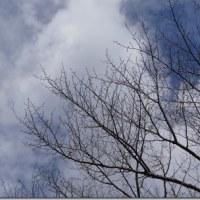 降る吹く曇